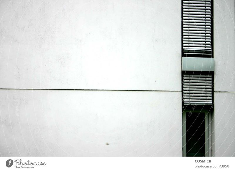 House (Residential Structure) Cold Wall (building) Gray Line Architecture Concrete Modern Clarity Side Haircut Office building