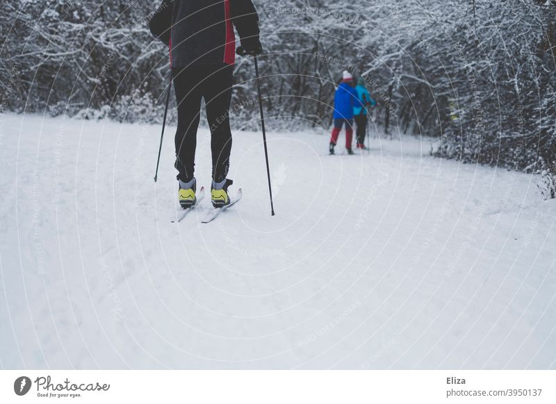 People cross country skiing in a winter snowy landscape cross-country Winter sports winter landscape Snow out Skiing Sports Movement Landscape Nature White