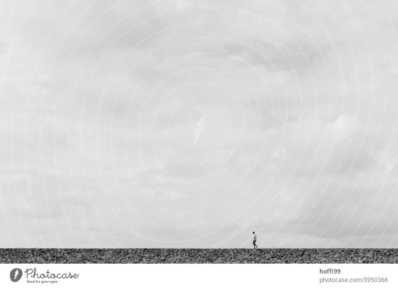 a lonely wanderer in the Wadden Sea Human being Low tide Beach Lanes & trails North Sea Mud flats Loneliness coast Silhouette Horizon Winter Going by oneself