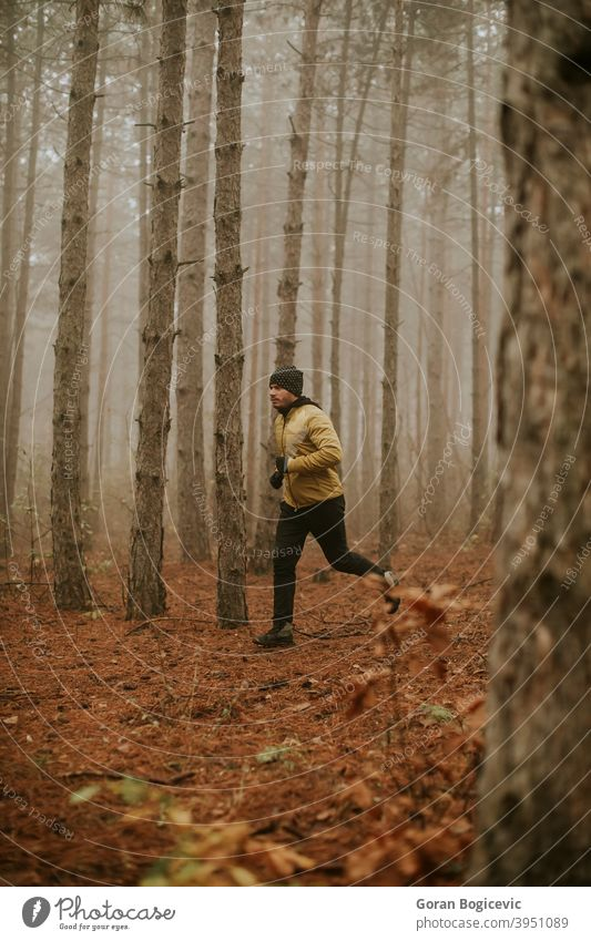 Young man running in autumn forest and exercising for trail run marathon endurance race fitness runner male jogging exercise nature people jogger athlete person