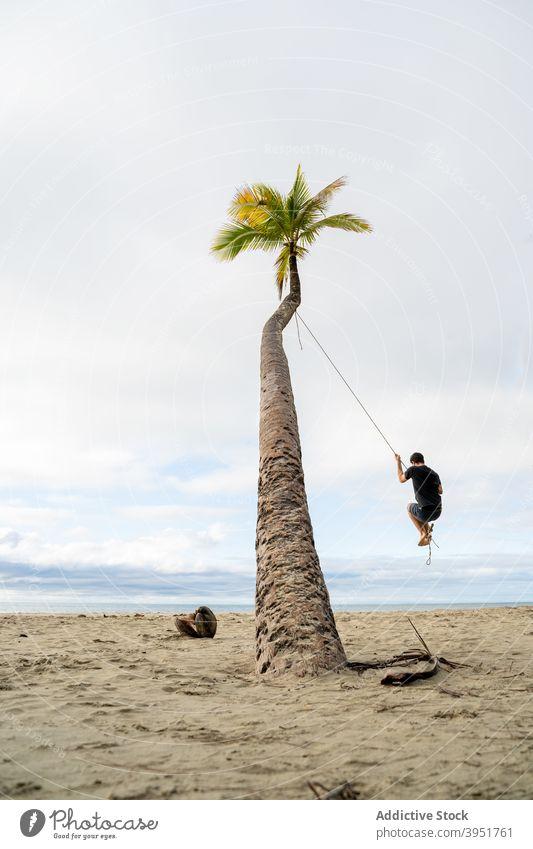 Man swinging on rope on palm man tree beach hang summer vacation seashore male australia nature holiday recreation tourism relax sand idyllic travel tropical