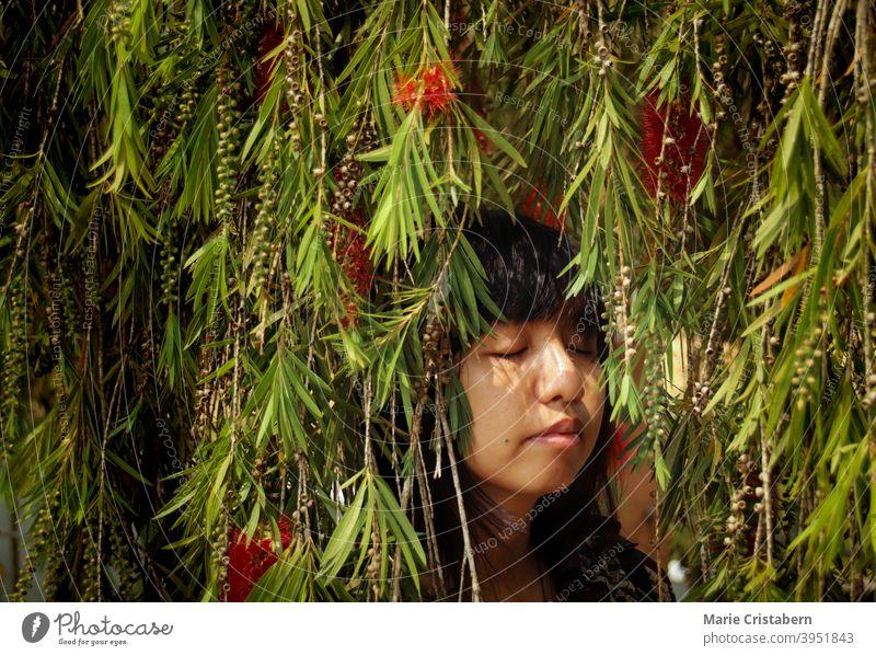 Asian girl relaxing among the bottlebrush tree leaves summer Spring time spring conceptual portrait eyes closed asian girl mindfulness meditation zen