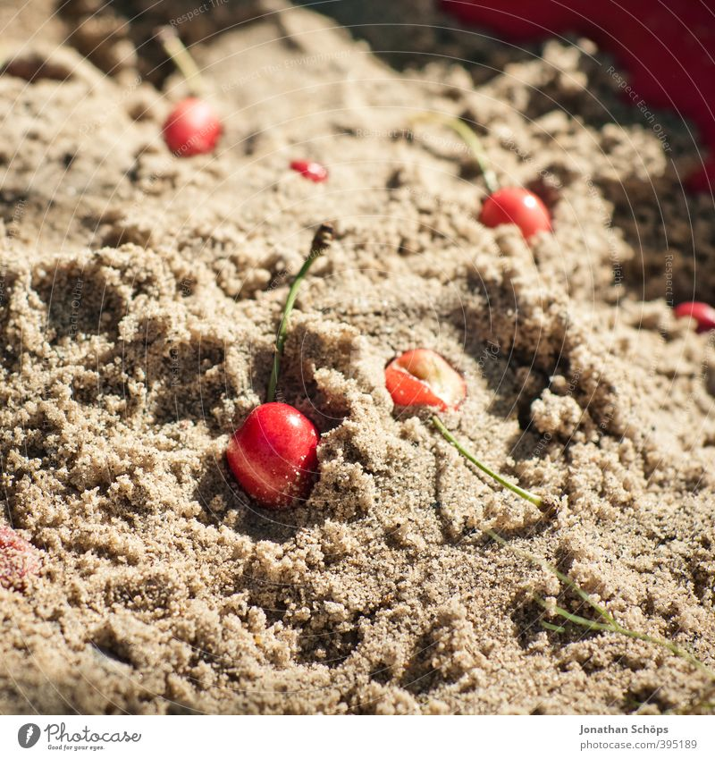 sand cherries Environment Nature Sun Beautiful weather Delicious Healthy Eating Cherry Sand Sandpit Fruit Red Exterior shot Garden Food photograph