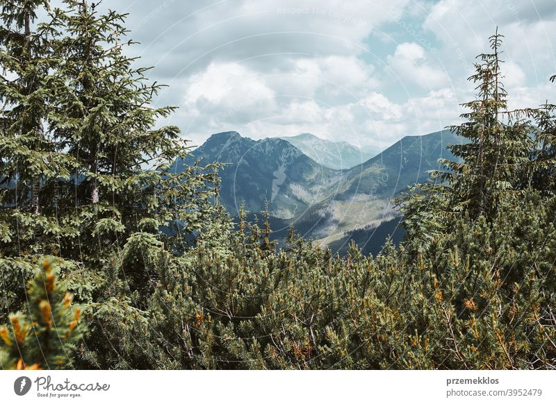 Tatra Mountains landscape. Scenic view of mountain rocky peaks, slopes, hills and valleys amazing outdoors nobody vacation path tourism trees top background
