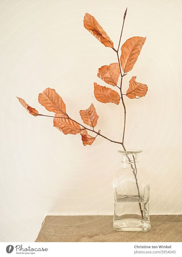 A small branch of a beech with leaves in autumn color stands in a small glass bottle. This stands on sandstone in front of a light background. Still life.