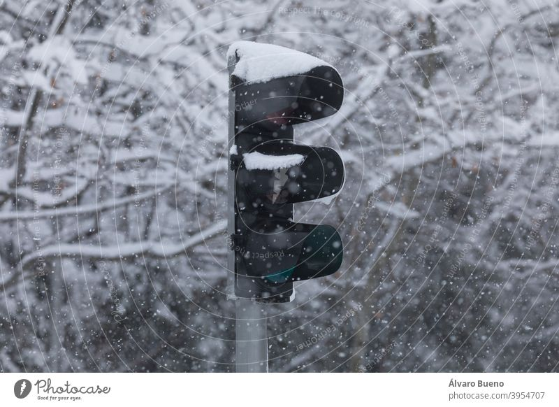 A traffic light, completely covered with snow, on a snowy day, due to the Filomena polar cold front. Madrid city capital Spain storm ice frozen winter year 2021