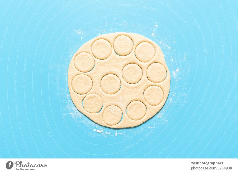 Making doughnuts process. Handmade donut dough cut in round shapes aligned american baking blue background breakfast cake calories circle shape comfort food