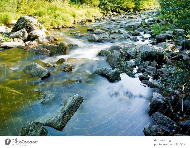 Nature Blue Green Water Summer Plant Tree Landscape Leaf Environment Cold Warmth Grass Stone Rock Weather