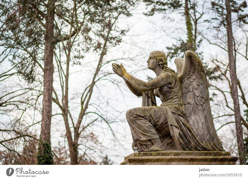 no more no angels, please!!! Statue Angel Figure pray praying Cemetery Art Exterior shot Religion and faith Grief Church Holy believe Prayer Hope Spirituality