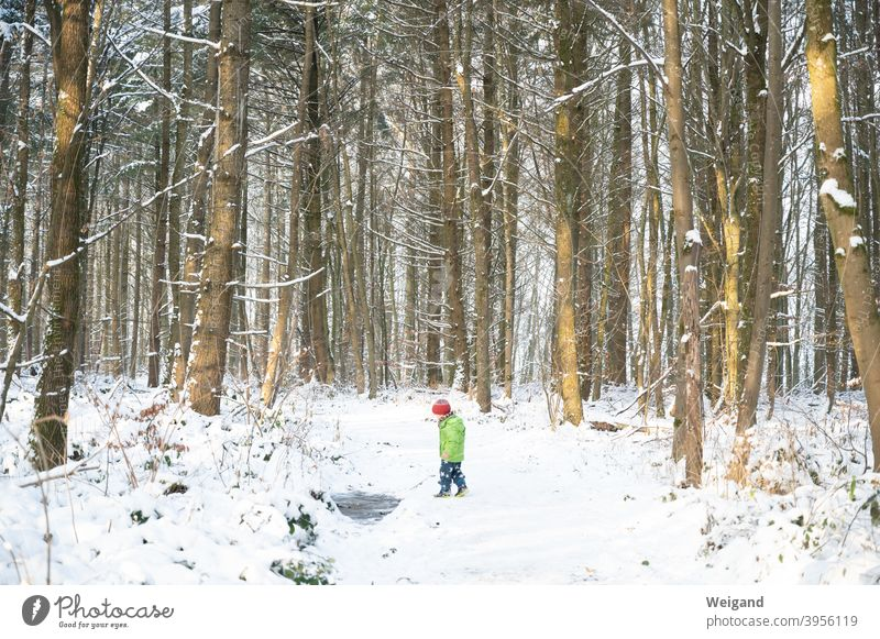 Child in winter in the forest Forest Infancy Kindergarten Winter Snow Cold To go for a walk Ice Discover hike