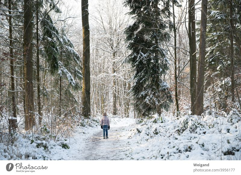 Child in winter forest Girl Winter Forest Winter forest Snow Cold To go for a walk Hiking explore Infancy Frost on one's own Winter vacation Winter mood Climate