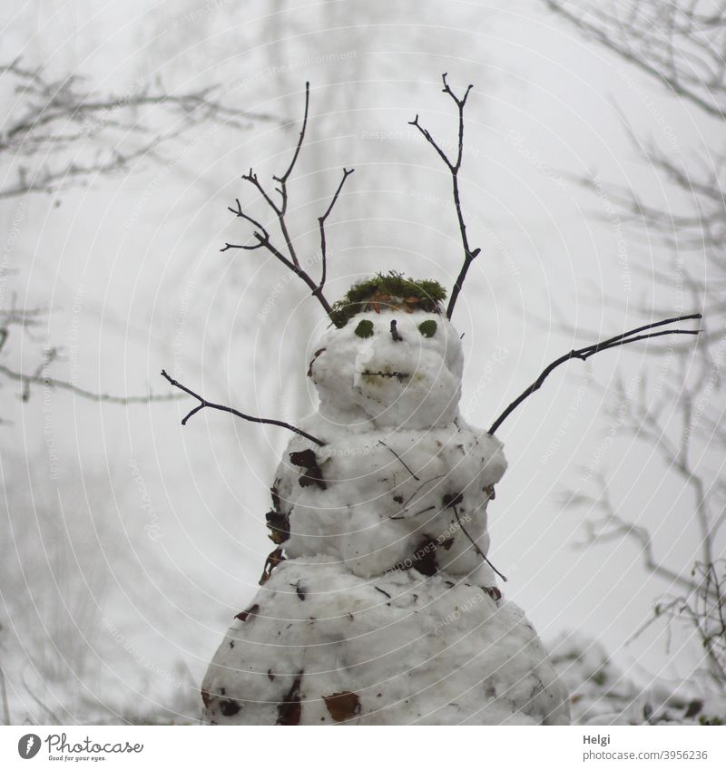 Snowman standing in foggy winter forest Winter Fog Cold White Exterior shot Joy Seasons Nature Frost Infancy Twig Forest January winter weather chill Black