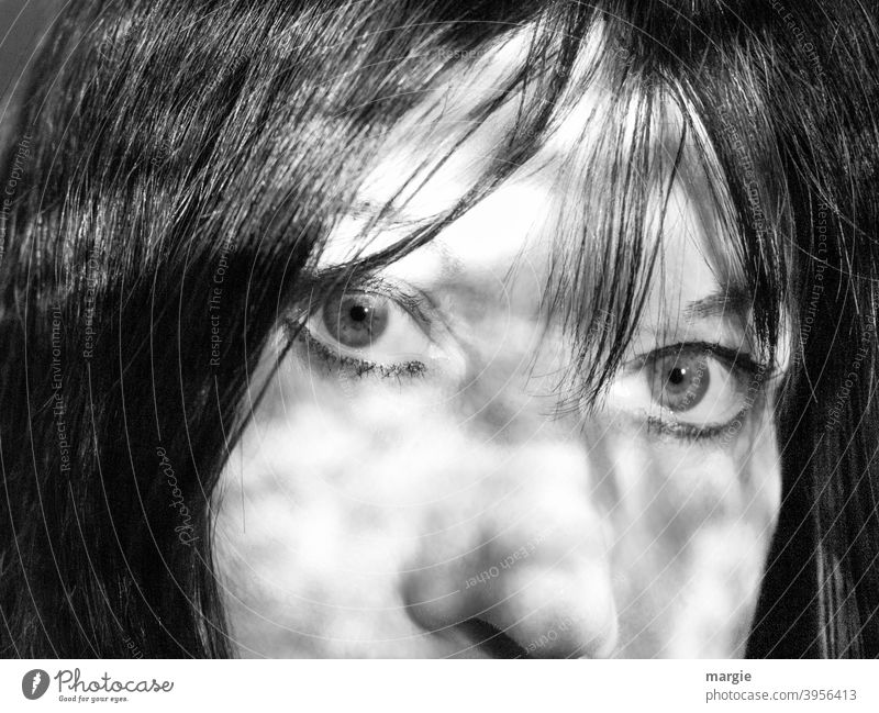 Face of a woman, eyes, nose, hair Woman portrait Human being Feminine Looking Looking into the camera Adults Nose Cheek face Light Head Day Dark-haired pretty