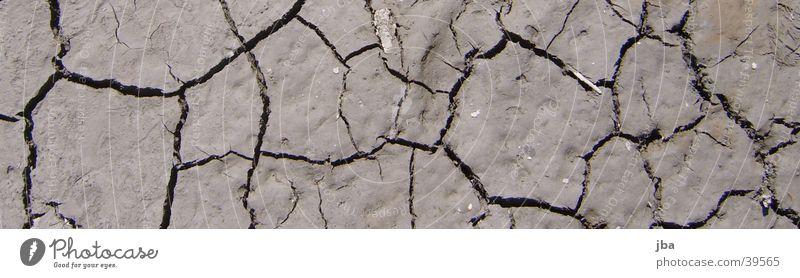 sea bed Sea bed Loam Brown Crack & Rip & Tear run dry Water
