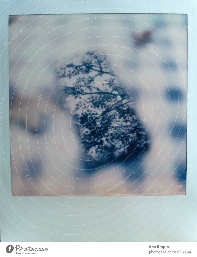 instant, polaroid, smartphone, reflection, autumn, tablecloth Corners Table Close-up