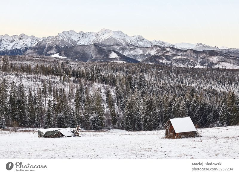Scenic mountain landscape in winter, Tatra Mountains, Poland. beautiful snow sky shelter hut cottage scenic view photo cold nature forest Zakopane snow capped