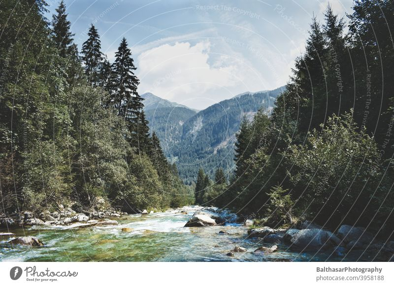 Mountain landscape - River - Austria stones Forest Coniferous trees Water Current Sky Clouds Horizon Dark green Nature Environment Picturesque Summer