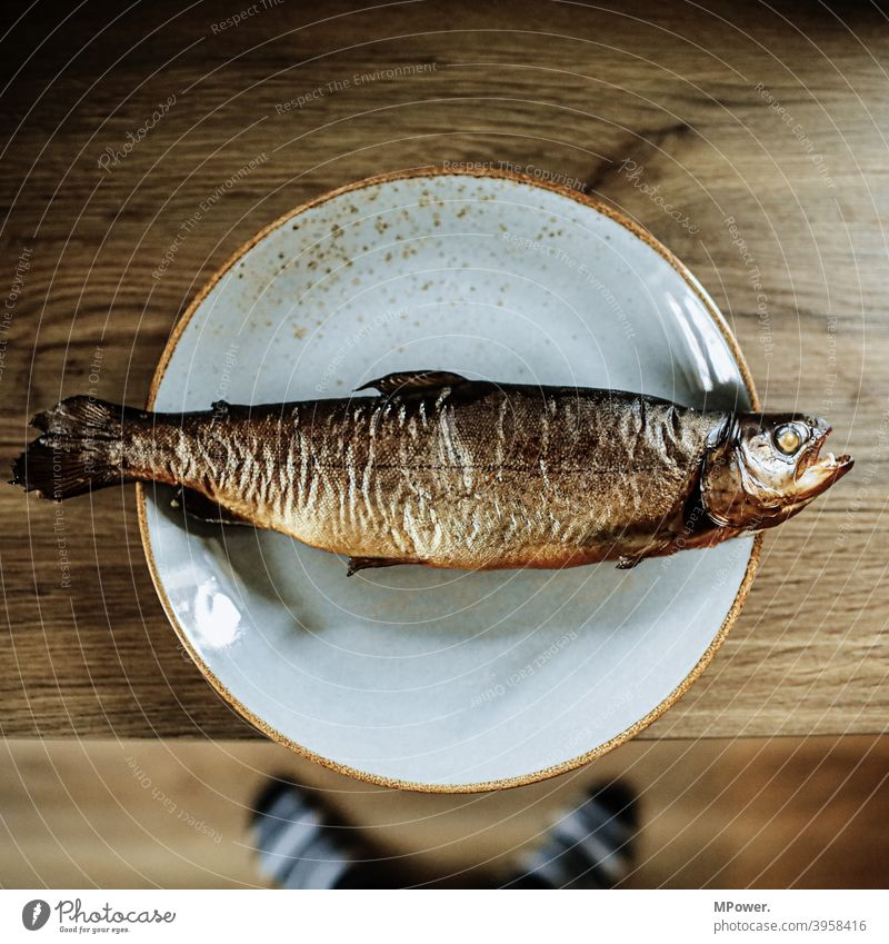 smoked fish (antivegan) Fish Kipper Trout Food Nutrition Smoked Smoked trout Dead animal Delicious Fresh Animal Detail Plate Edge of a plate Flake Fish mouth
