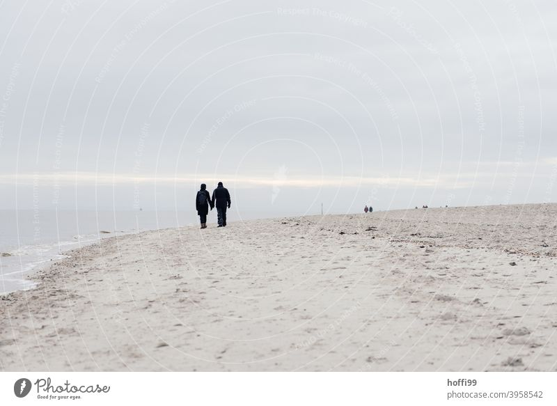 two people walk along the wintry stand. Relationship Silhouette Human being Hiking 2 Sand Beach North Sea coast Partner Together Couple National Park Movement