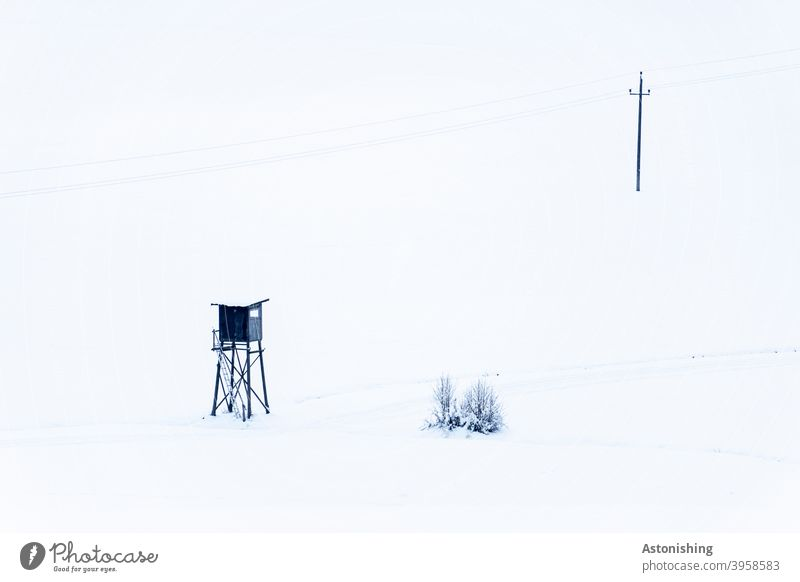 Power pole and high stand in the snow high level Electricity pylon Snow Winter White bush shrub Nature Landscape Line Cable power cable trace Exterior shot