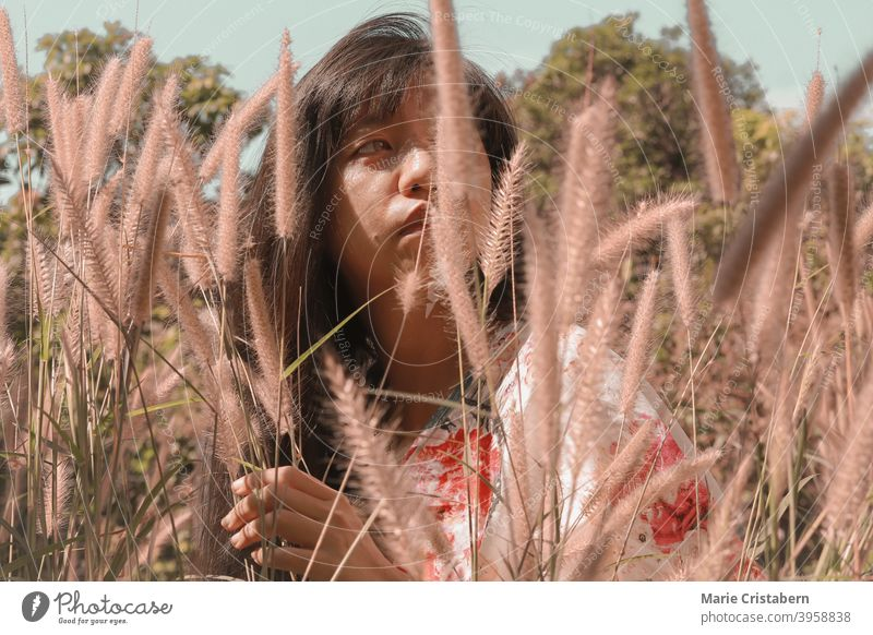 Beautiful Asian girl among the meadow of fountain grasses asian woman conceptual natural emotion tranquility calm bliss sunny sensuality harmony back to nature