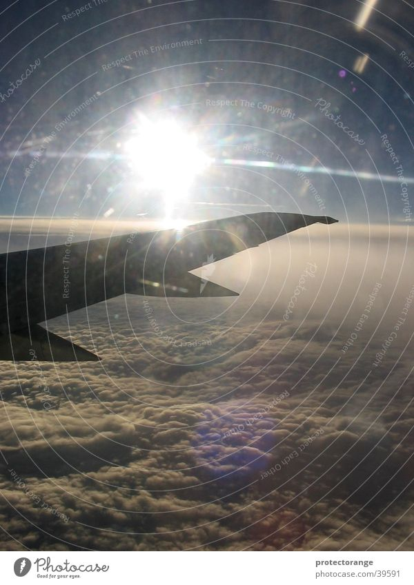 Sky Sun Clouds Airplane Aviation Wing