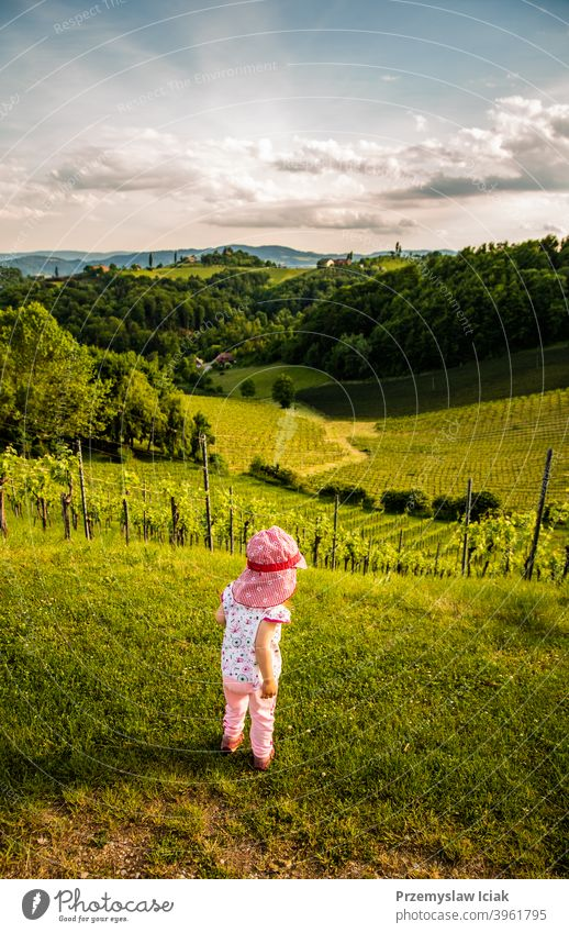 Baby looking at landscape of vineyard baby summer child wine nature candid rural scenery south southern steiermark vineyards hills styria person plant