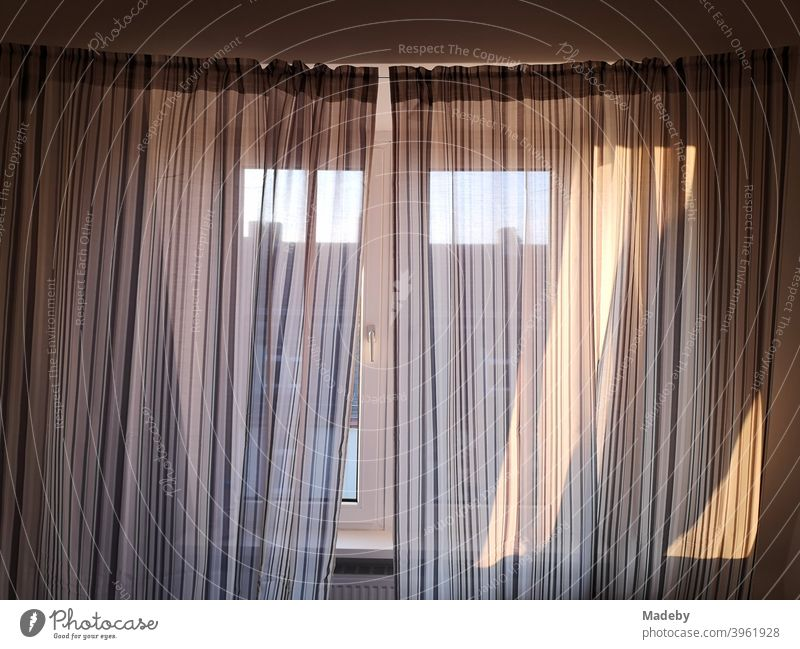 Curtain in front of the window of a penthouse in sunshine in the trendy Nordend in Frankfurt on the Main in Hesse Drape Screening sun protection Bedroom Window