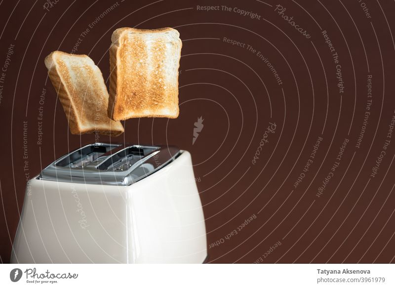 Slices of toast jumping out of the toaster bread breakfast food slice equipment electric appliance toasted utensil sandwich brown cooking morning fresh flying