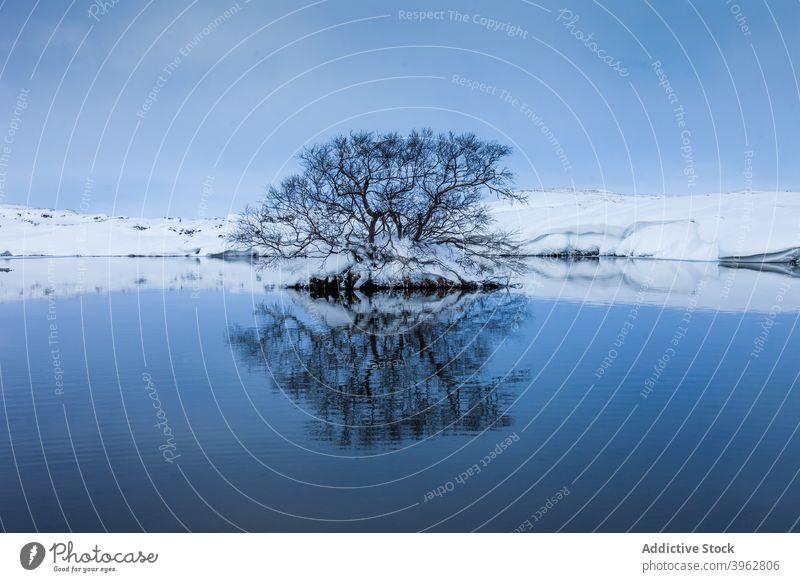 Lake in mountainous terrain in winter lake tree snow landscape sunset scenery wintertime highland iceland sky tranquil picturesque idyllic nature breathtaking