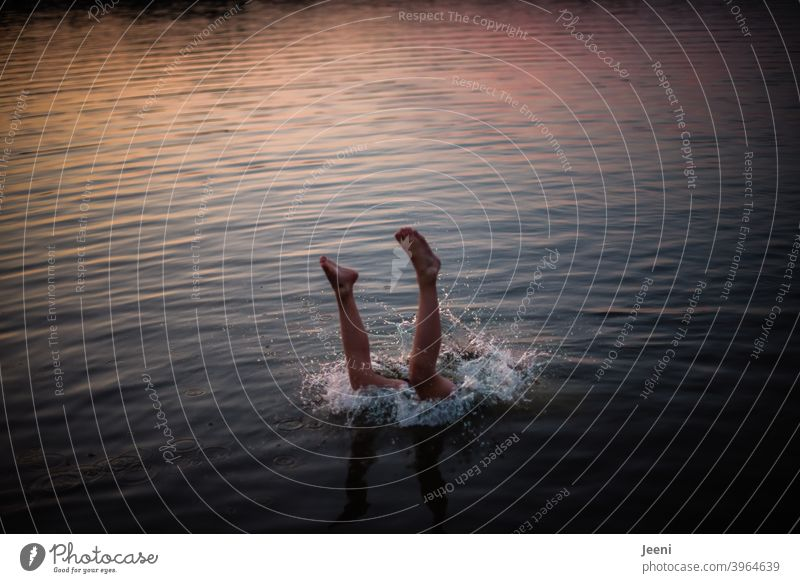 A jump headfirst into the lake | the legs are still visible before the body disappears into the water | It is summer and the last rays of the evening sun are shining over the water