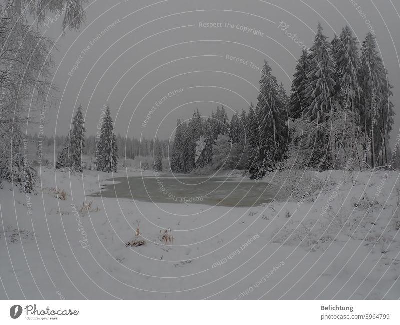 Winterlandschaft Schnee Eis Kälte Harz Märchenwald