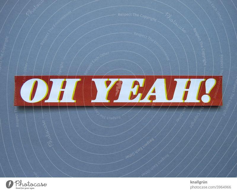 Oh, yeah! Enthusiasm Joie de vivre (Vitality) Happy Elation Joy Happiness Emotions Euphoria Optimism Moody Success Contentment Letters (alphabet) Word leap
