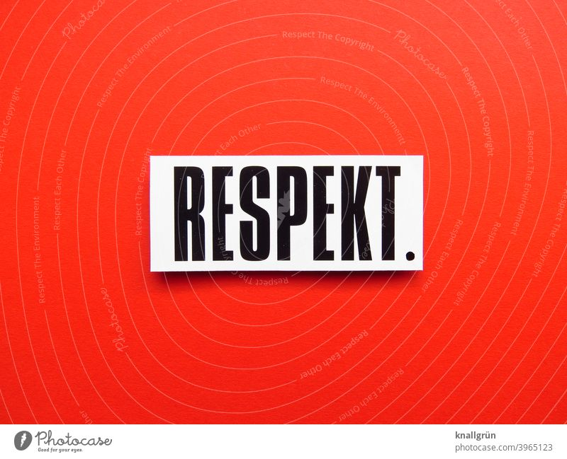 RESPECT. Respect Human being togetherness esteem Moody Emotions Letters (alphabet) Word leap Text letter Latin alphabet Characters Typography Language