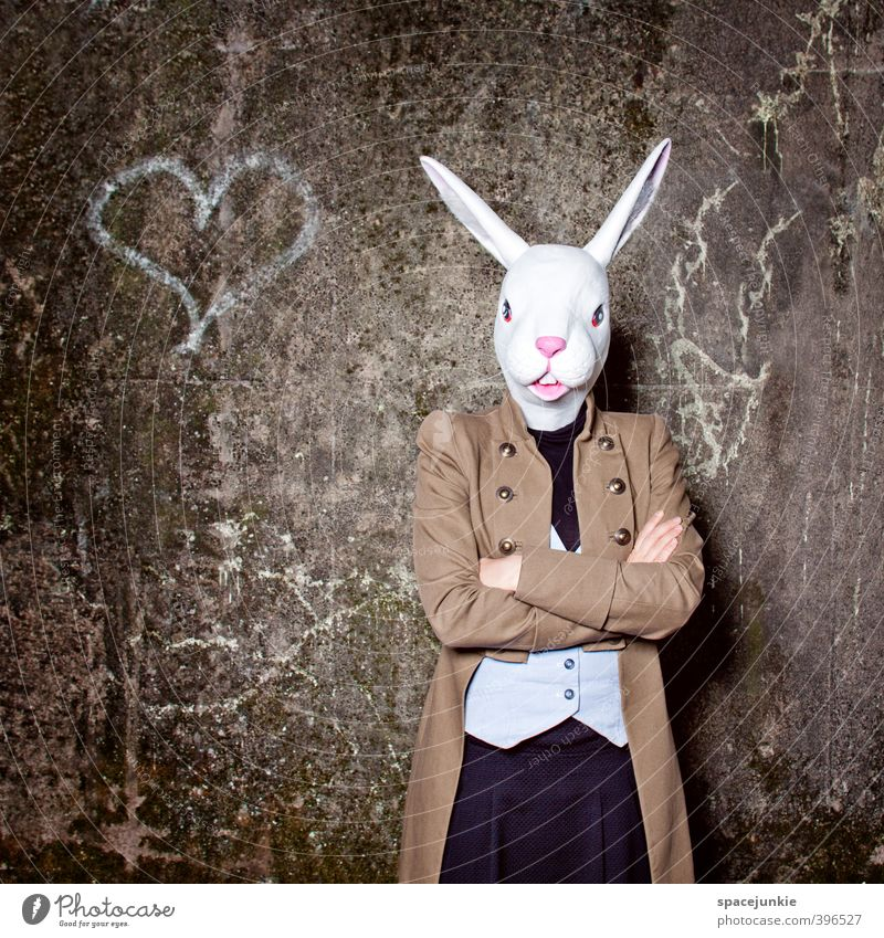 The lovely rabbit Human being Feminine Young woman Youth (Young adults) Woman Adults 1 18 - 30 years Artist Ruin Wall (barrier) Wall (building) Facade Animal