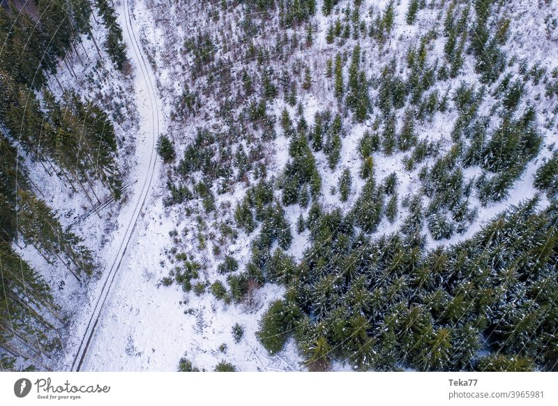 #Winter forest from above Forest forest path winterwaldweg Snow Ice Cold Aerial photograph