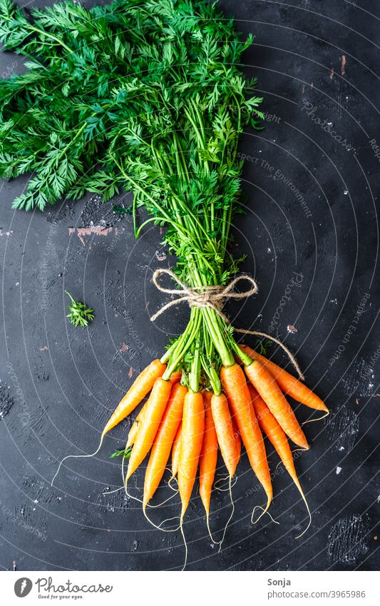 A bunch of carrots on a black background green stuff Federation 19 Orange Vegetable carotene Vegetarian diet Organic produce Food Colour photo Healthy Fresh