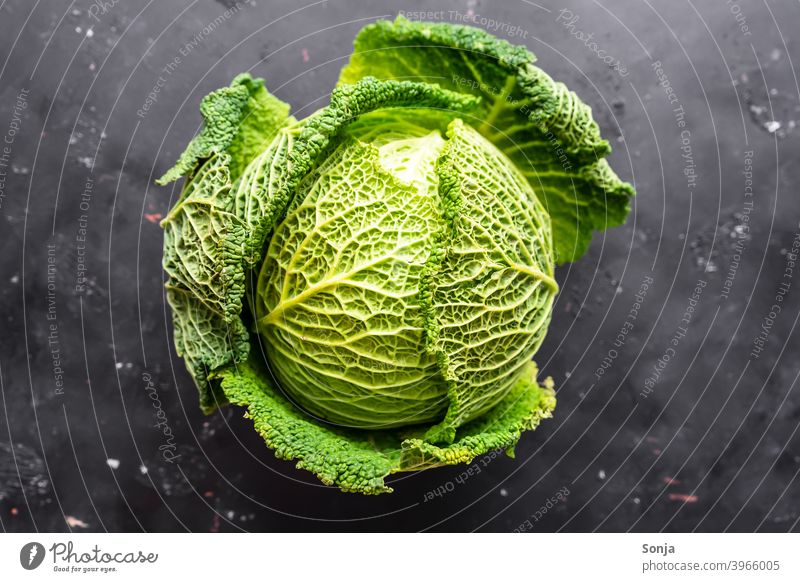 A raw savoy cabbage on a black background. Top view Savoy cabbage Cabbage Raw Green Vegetable Food Nutrition Vegetarian diet Healthy Organic produce