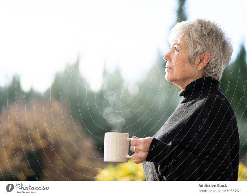 Senior woman having a cup of coffee near home window senior caucasian elderly european lifestyle portrait people relaxing retired serene white hair grandmother