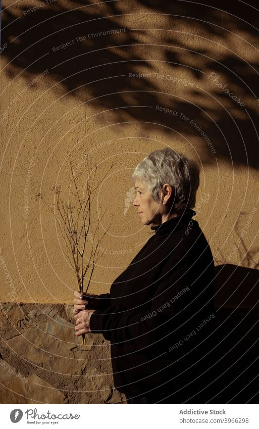 Side view of relaxed senior woman elderly caucasian european lifestyle portrait people relaxing retired serene white hair mother grandmother experiencing