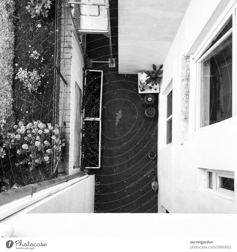 the window to the courtyard. Canyon depth Deep Deserted Architecture Black & white photo Interior courtyard Exterior shot House (Residential Structure) Facade