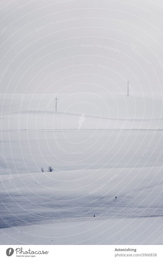 white winter landscape Winter White Landscape Snow Nature Weather Hill stream Electricity pylon Horizon tranquillity silent Idyll lines Sky Clouds Gray
