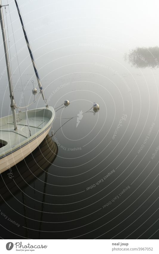 Bow of a sailboat on glassy lake in morning fog tranquillity Nature Idyll poetry Moody harmony Lake Water Surface of water reflection smooth early
