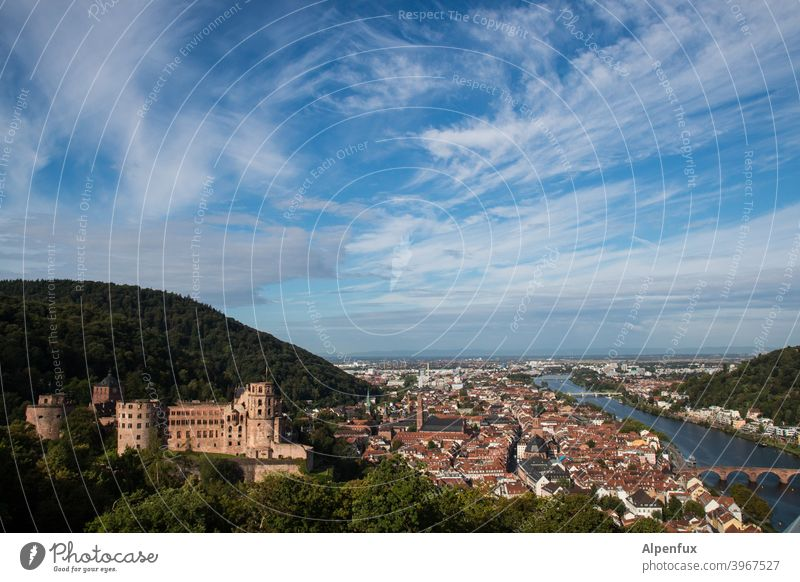 Neckarblick Heidelberg Lock Castle Exterior shot Colour photo Deserted Old town Architecture Ruin Day Town Wall (barrier) Tourist Attraction Historic Building
