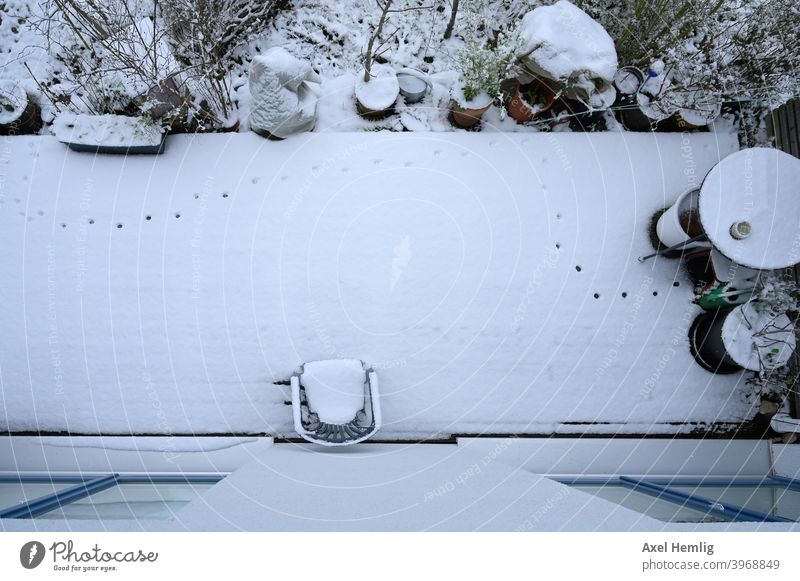 During the night a cat explored the terrace in the fresh snow and left traces. Cat Snow Terrace Garden Winter wood preservation tracks in the snow Prints
