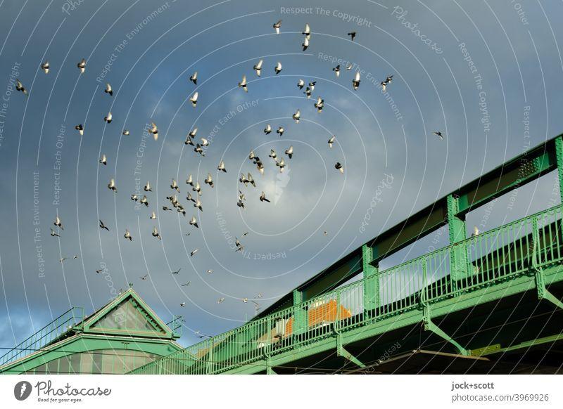 Swarming over the Eberswalder elevated railway Flock of birds Bird Subway station Eberswalder Street Schönhauser Allee Clouds Prenzlauer Berg Bridge