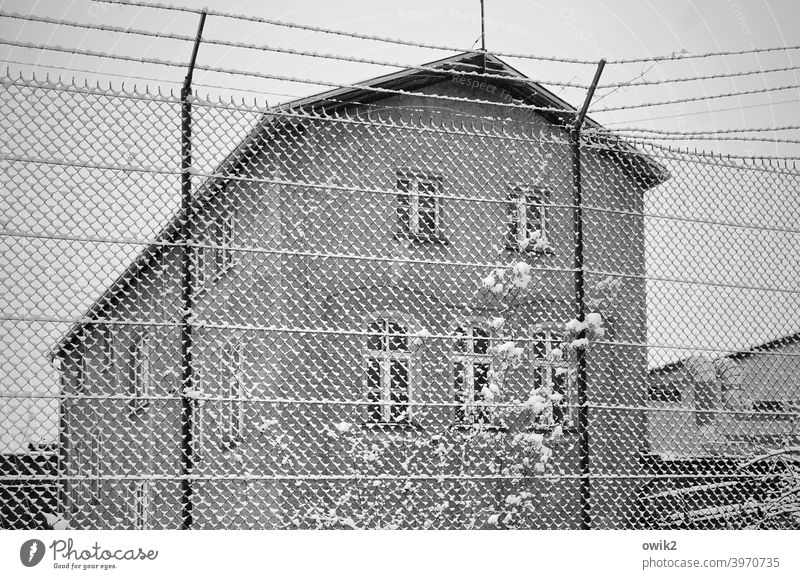 Difficult to access Wire netting fence Boundary House (Residential Structure) Window Wall (building) Wall (barrier) Town Exterior shot Calm Long shot Deserted