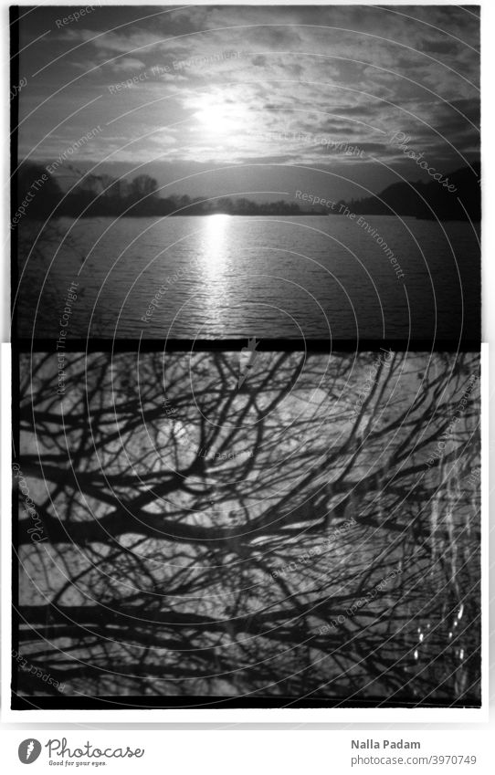 Cityscape Duet 3 Analog Analogue photo black-and-white half format Diana Mini Water Kemnader Reservoir Sun Sunset Sky Clouds two pictures branches trees