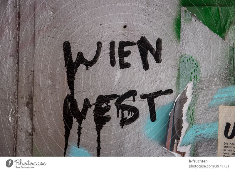 "Graffiti on wall, ""Wien West"" lettering Vienna Wall (barrier) Wall (building) Facade Characters Sign Gray Letters (alphabet) Street art Youth culture"
