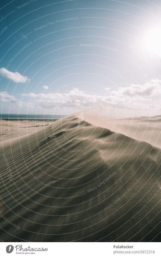 #AS# Desert love duene Wind Waves Sand Beach Beach dune Vacation & Travel Ocean coast Nature desert landscape desert sand Desert road dune landscape